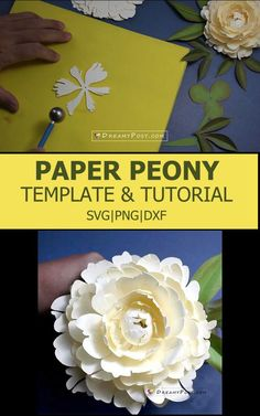 Step by step to make a realistic paper peony Flower Box Gift, Flower Boxes, Silhouette Cameo, Silhouette Machine, Paper Peonies, Paper Flowers, Coral Charm Peony, Shapes And Curves, Paper Bouquet