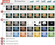 Changing #Color of #Pictures in #PowerPoint 2013