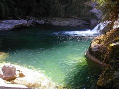 Você realmente sabia?: Parque Nacional de Itatiaia - Serra da Mantiqueira - Rio de Janeiro/Minas Gerais.