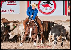 Im Lick Checks and Brent Erickson at 2013 South Point Futurity