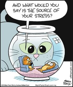 Off the Mark: And what would you say is the source of your stress? Off the Mark: Und was ist Ihrer Meinung nach die Ursache [. Cat Jokes, Funny Cat Memes, Funny Cartoons, Funny Comics, Haha Funny, Funny Cats, Funny Animals, Hilarious, Stress Humor