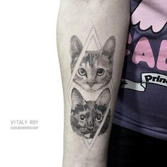 #cattoo More