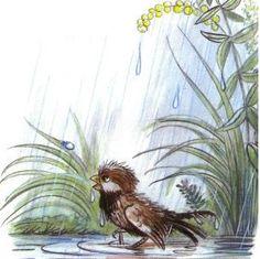 Сказка: Под грибом (иллюстрации: Сутеев В.) Multicultural Activities, Lisbeth Zwerger, My Childhood Memories, Kawaii, Rainy Days, Cute Drawings, Illustration Art, Book Illustrations, Fairy Tales