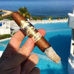 Good morning sunshine  This wonderful day starts with a delicious Senorial 65th Anniversary in the sun by the pool  Hope you all are having a great day too  | Photo by:  @thomaslindgren63  Thanks for tagging your photo with #smokersrd ! Dominican Republic #cigarcountry !  #botldominicanchapter #botl #sotl #cigaraficionado #cigaraficionados #cigar #cigars #cigaroftheday #tobacco #cigarlife #cigarworld #cigarsociety #thecigarculture #thesnsclub #cigarsnlife #cigarsocialclub #cigarboss…