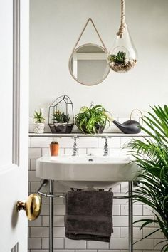 House plants breathe life into interiors, while cleaning the air as they grow, and look amazing and vibrant in any room -- we love the mix of potted succulents, palm trees, air plants and terrariums in this all-white bathroom.