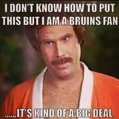 I don't know how to put this but I am a Bruins fan. It's kind of a big deal. Boston Bruins hockey baby!