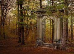 Forest Portal, Italy photo via maria