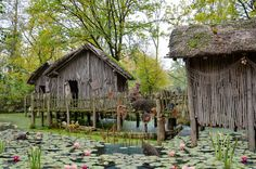 10 Reasons to Try a Village Stay - Ecotourism-World Free Pictures, Free Photos, Free Images, Online Marriage, Buy Smartphone, Splash Page, Cultural Experience, Fishing Villages, Water Lilies