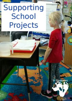 Supporting School Projects - different thought and ideas about school projects plus three questions to ask yourself about the project - 3Dinosaurs.com