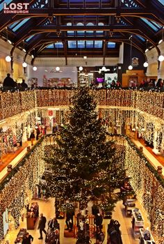The magnificent Jenners Christmas tree. I remember going to Jenners as a kid . Christmas Travel, Christmas And New Year, Christmas Time, Merry Christmas, Scotland Uk, Edinburgh Scotland, Edinburgh Christmas, Tartan Christmas, Christmas Lights