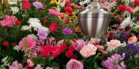 Surrounded by flowers Green Funeral, Memorial Services, Create, Flowers, Plants, Florals, Planters, Flower, Blossoms