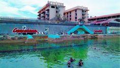 Si usted está buscando dentro de la ciudad un lugar tranquilo frente al mar, con la posibilidad de combinar un viaje de negocios con la práctica del buceo, o disfrutar con su familia de una visita al Acuario Nacional, el Hotel Copacabana es el lugar perfecto en La Habana. #habana #cuba #hotel