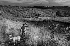 Claudio (il contadino) - le foto di Marco. Da paura come sempre.