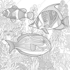 Tropical Fishes Coloring Pages Animal