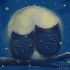 """""""Owl Follow You Into The Dark"""" - one part Death Cab for Cutie, two parts owl.   -jolie alicia"""