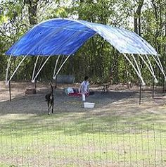 Free plans and pictures of PVC pipe projects. I wonder if building something like this would be more cost effective then renting a tent?