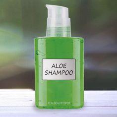 15  homemade natural shampoo recipes - Aloe Vera Shampoo - Oily hair shampoo, dandruff shampoo, dry hair shampoo, clarifying shampoo, hair shine shampoo....
