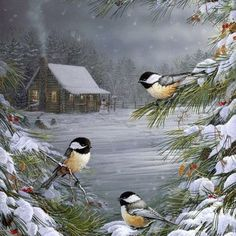 Buy Winter Bird - Birds Paint By Number kit or check our new modern collections for adults paint by numbers. Relax and enjoy your canvas painting Christmas Bird, Christmas Scenes, Vintage Christmas Cards, Christmas Pictures, Merry Christmas, Vintage Cards, Christmas 2019, Winter Christmas, Christmas Desktop