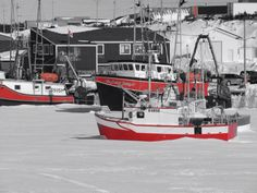 Fishing boats frozen in the sea ice at Port au Choix. It will be late April Devon Uk, Sea Ice, Ocean Sounds, Newfoundland And Labrador, Beautiful Sites, Amazing Pics, My Heritage, Fishing Boats, Boating