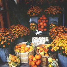Its always the Small Things Autumnal