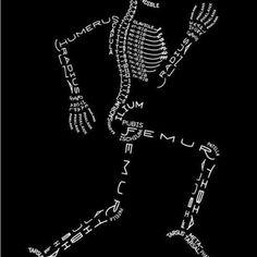 anatomy science | Word art meets anatomy. | science
