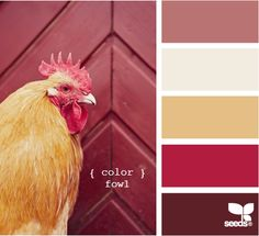 Design Seeds - color fowl    There could be many jokes with the name of the color scheme but I like the tones enough not to say them. Yet.