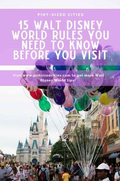 Fifteen important rules you need to know before you visit Walt Disney World including stroller sizes, prohibited items and outside food and drink and more.   #DisneySide #WDW #DisneyWorld #MagicKingdom #DisneyWorldHacks #DisneyWorldTips #FastPass+ #WaltDisneyWorldResort #WaltDisneyWorld #AnimalKingdom #Epcot #DisneysHollywoodStudios