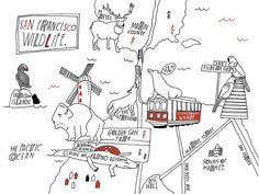 San Francisco Wildlife // a map I did for the SF @wildsam guide that I illustrated in 2013 by lisacongdon