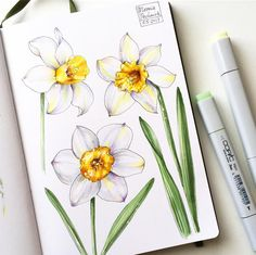 33 Ideas Nature Drawings Sketchbooks Journal Pages Copic Marker Art, Copic Art, Sketch Markers, Drawing With Markers, Copic Drawings, Art Drawings, Drawing Sketches, Watercolor Cards, Watercolor Flowers