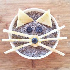 Miau!!! Hoy el desayuno fue un gato saludable . Me encanta hacer desayunos entretenidos y ver que a Pedrito ya le llame la atención! Chia pudding a la vainilla con orejas y bigotes de manzana, ojos de arándano y nariz de plátano/arándano, estaba exquisito!!!! Que tengan lindo y tranquilo domingo ✌️  Más recetas e ideas en http://www.savitari.com  #healthy #cat #breakfast #chiapudding #fit #kids #desayuno #saludable #gato #niños