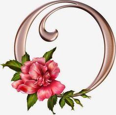 abc-letras-rosa-rosas-flores-primavera-alfabeto+(15).jpg 512×506 pixels