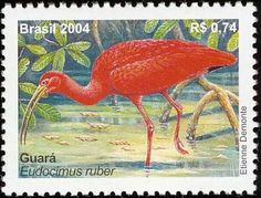 Scarlet Ibis stamps - mainly images - gallery format Postage Stamp Collection, Rare Stamps, My Stamp, Stamp Collecting, Beautiful Birds, Postage Stamps, South America, Poster, Storks