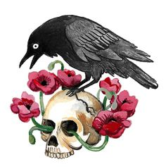 'Crow, Skull and Poppies' Sticker by Aimee Lockwood Crow Skull, Skull Art, Crows Drawing, Crow Art, Drawing Sketches, Drawings, Skull Illustration, Aesthetic Painting, Aesthetic Stickers