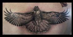 hawk tattoos for women black and grey | Cory Norris - black and grey hawk