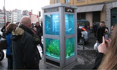 Oh, boy. This is not just cute — it's brilliant.  http://www.kickvick.com/creative-aquariums-ideas/