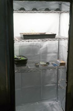 Growing plants indoors will require you to have a grow tent to make sure that you can create a controlled . Read moreDiy Grow Tent: 12 Easy Yet Inexpensive DIY Grow Box Ideas You Can Build Small Potted Plants, Indoor Plants, Indoor Gardening, Make A Door, Diy Tent, Growing Plants Indoors, Grow Boxes, Garden Web, Grow Room