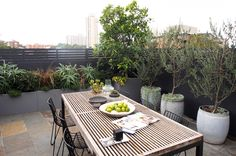 Roof garden designed by Adam Robinson