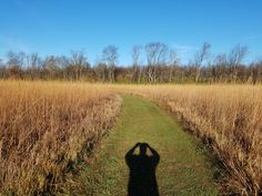 Prophetstown State Park Indiana November 2016 #hiking #camping #outdoors #nature #travel #backpacking #adventure #marmot #outdoor #mountains #photography