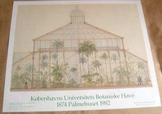 Plakat Palmehus