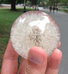 A Dandelion Preserved In Resin Looks Incredibly Cool, And It's So Simple To Do