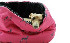 IG- NEST FLORAL  An ideal burrow, nest for your Italian Greyhound Fluffy Dogs, Moka, Italian Greyhound, Whippet, Fur Babies, Nest, Floral, Pattern, Bags
