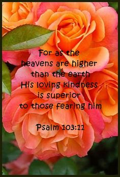 For as the heavens are higher than the earth, his loving kindness is superior to those fearing him.  Psalm 103:11