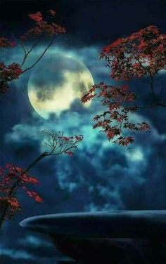 blue moon in autumn red Moon Images, Moon Photos, Moon Pictures, Nature Pictures, Beautiful Pictures, Photo Backgrounds, Background Images, Stars Night, Ciel Nocturne