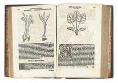 Image result for William Turner herbal