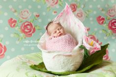 Felted Calla nest for newborn photography. Felted nest for newborn, newborn posing bowl