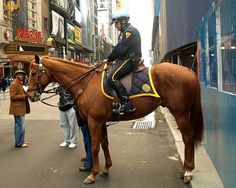 PMU NYPD Mounted Police Officer on Horseback, Theatre District, New York City
