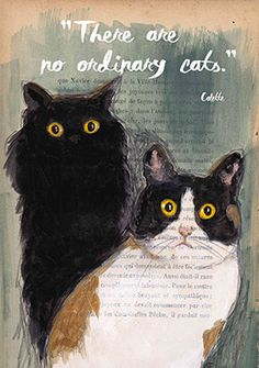 Offerte afdrukken-Cat illustratie-Art Print-Cat Art-Home