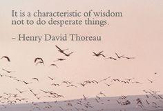 Wisdow Quotes