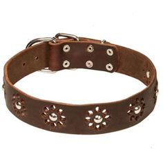 #Designer #leather #dog #collar for Cane Corso $49.90 | all-about-cane-corso-dog-breed.com