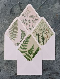 Botanical inspired envelopes